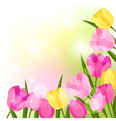 Spring flowers tulips natural background vector