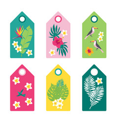 summer tropical tags vector image