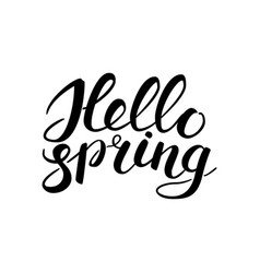 phrase hello spring brush pen lettering isolated vector image vector image