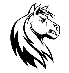 Silhouette of white horse vector image