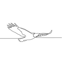 continuous one line drawing flying eagle vector image
