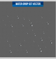Realistic drops pure on transparent background vector