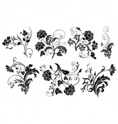set of design floral elements vector image