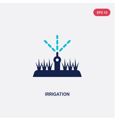 Two color irrigation icon from agriculture vector