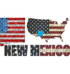 USA state of New Mexico on a brick wall vector image vector image