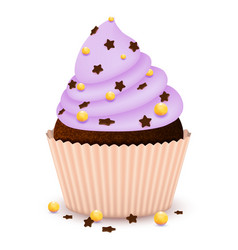 chocolate cupcake with decorate vector image