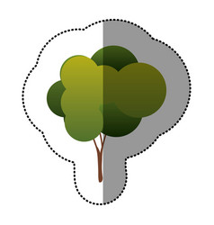 color natural tree icon vector image