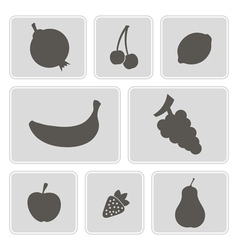 monochrome icons with fruits vector image vector image