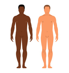 african and european men human front side vector image