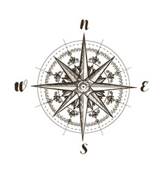 Compass wind rose vintage sketch vector