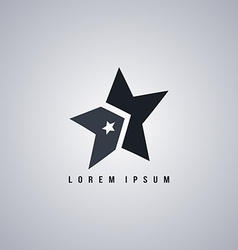 star template art vector image