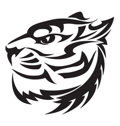 tiger head design vintage engraving vector image