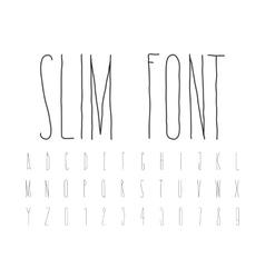 Simple decorative font handwritten slim alphabet vector image