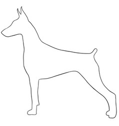 dog contourcute dog coloring isolated vector image vector image