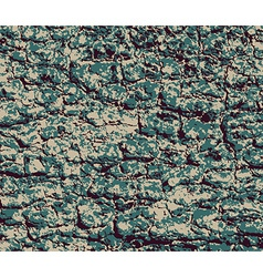 Background and texture of bark vector image vector image