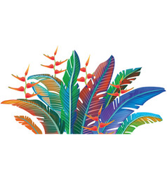 colored tropical leaves vector image vector image