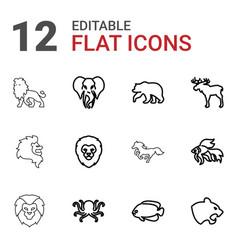 12 wild icons vector