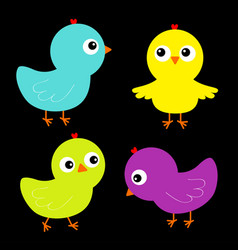 Colorful bird set icon face head chicken chick vector