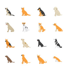 dogs flat icons vector image