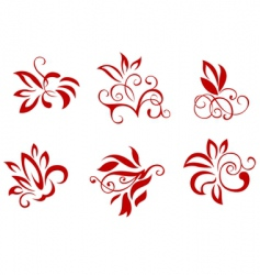 floral and flower decorations vector image