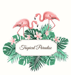 Tropical paradise green leaves flowers flamingo vector