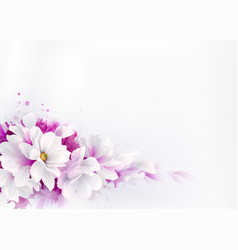 white beautiful magnolias spring vector image