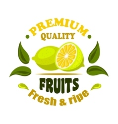 Fresh lemon fruits round badge with leaves vector image