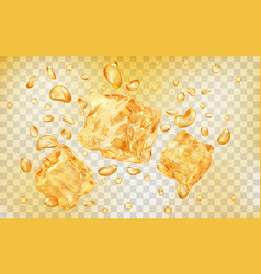 ice cubes under water vector image