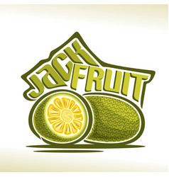 Jackfruit vector