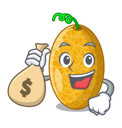 With money bag fresh honeydew melon on cartoon vector