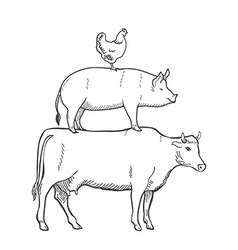 Chicken Pork Cow Farm Animals vector image