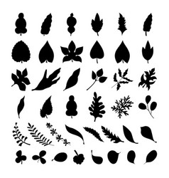black foliage silhouette collection doodle style vector image