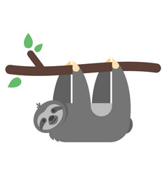 flat style of sloth vector image