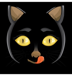 head of a black cat with yellow eyes on a black b vector image vector image