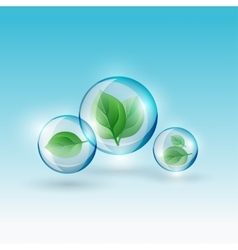 02 infographics bio bubble vector