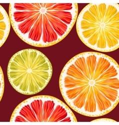 Citrus slices seamless vector