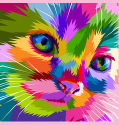 close up face adorable cat vector image