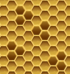 Create honeycomb with larvae texture vector image