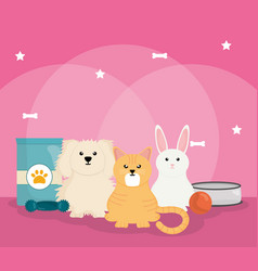 group pets with food vector image