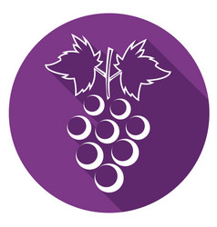 icon grapes with a long shadow vector image