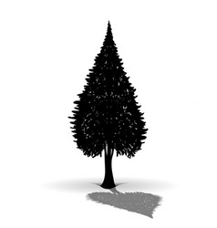 silhouette of fir vector image