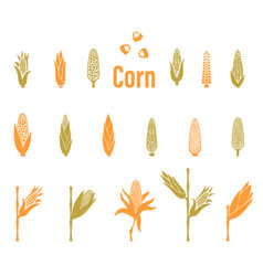 corn icons agriculture logo template vector image