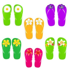 Flip Flops With Color Flowers vector image vector image
