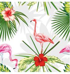 composition exotic birds flamingos plants flowers vector image