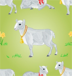 Easter lamb and daffodil seamless texture vector image