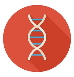 Flat Science and Medicine DNA Circle Icon with vector