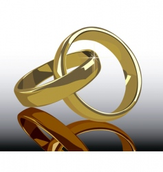 gold wedding rings with reflection vector image