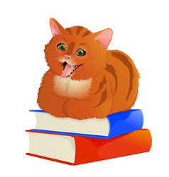 Red-haired cat lying on books vector
