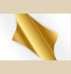 sheet of curled gold paper background vector image
