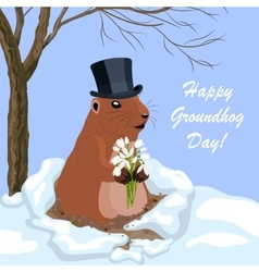 With cute groundhog vector